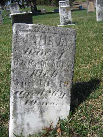 MCADOW, METILDA - Union County, Ohio | METILDA MCADOW - Ohio Gravestone Photos