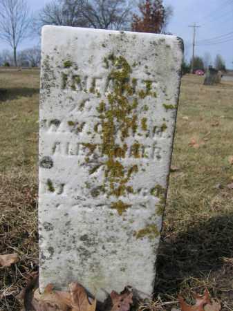 ALEXANDER, INFANT - Union County, Ohio   INFANT ALEXANDER - Ohio Gravestone Photos
