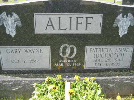 ALIFF, PATRICIA ANNE - Union County, Ohio | PATRICIA ANNE ALIFF - Ohio Gravestone Photos