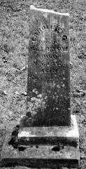 AMERINE, CAROLINE - Union County, Ohio | CAROLINE AMERINE - Ohio Gravestone Photos
