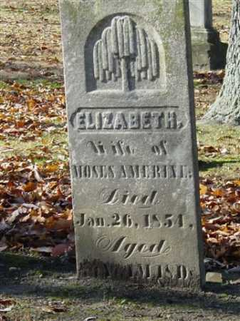 AMERINE, ELIZABETH - Union County, Ohio | ELIZABETH AMERINE - Ohio Gravestone Photos