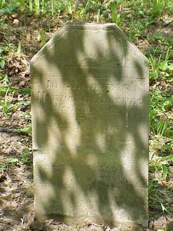 AMERINE, HENRIETTA - Union County, Ohio | HENRIETTA AMERINE - Ohio Gravestone Photos