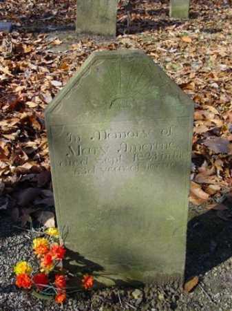 AMRINE, MARY - Union County, Ohio | MARY AMRINE - Ohio Gravestone Photos