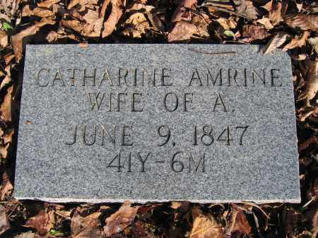 AMRINE, CATHARINE - Union County, Ohio | CATHARINE AMRINE - Ohio Gravestone Photos