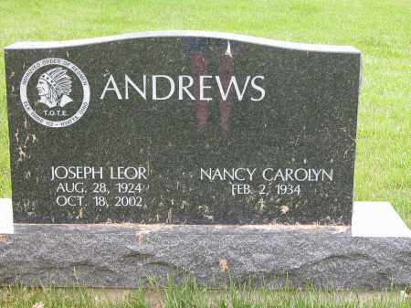 ANDREWS, JOSEPH LEOR - Union County, Ohio | JOSEPH LEOR ANDREWS - Ohio Gravestone Photos