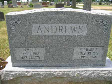 ANDREWS, JAMES S. - Union County, Ohio | JAMES S. ANDREWS - Ohio Gravestone Photos