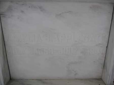 APPLEGATE, AMELIA B. - Union County, Ohio | AMELIA B. APPLEGATE - Ohio Gravestone Photos