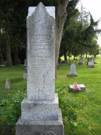 BACON, PERRY A. - Union County, Ohio | PERRY A. BACON - Ohio Gravestone Photos