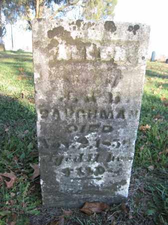 BAUGHMAN, ALLEN - Union County, Ohio | ALLEN BAUGHMAN - Ohio Gravestone Photos