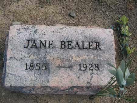 BEALER, JANE - Union County, Ohio | JANE BEALER - Ohio Gravestone Photos