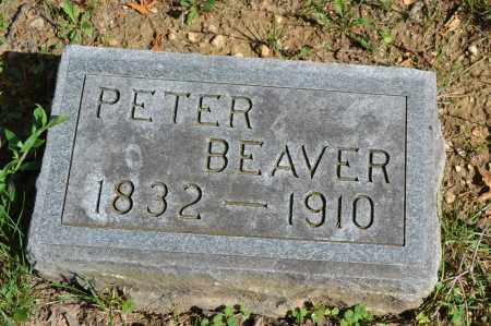 BEAVER, PETER - Union County, Ohio | PETER BEAVER - Ohio Gravestone Photos