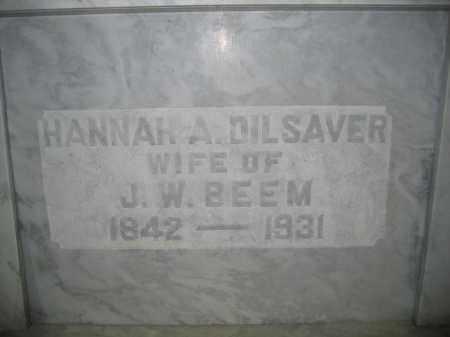 BEEM, HANNAH A. DILSAVER - Union County, Ohio | HANNAH A. DILSAVER BEEM - Ohio Gravestone Photos