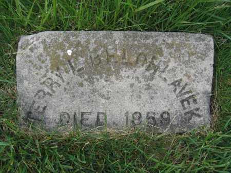 BELOHLAVEK, TERRY L. - Union County, Ohio | TERRY L. BELOHLAVEK - Ohio Gravestone Photos