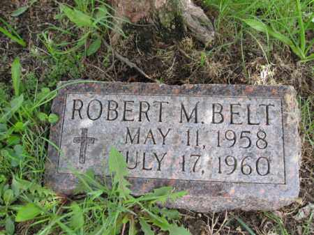 BELT, ROBERT M. - Union County, Ohio | ROBERT M. BELT - Ohio Gravestone Photos