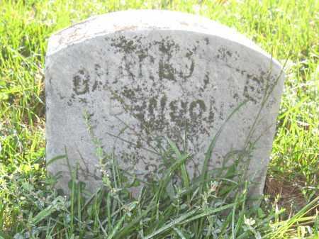 BENSON, CHARLOTTE - Union County, Ohio | CHARLOTTE BENSON - Ohio Gravestone Photos