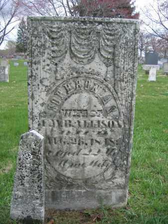 BENTLEY, CHARLES E. - Union County, Ohio | CHARLES E. BENTLEY - Ohio Gravestone Photos