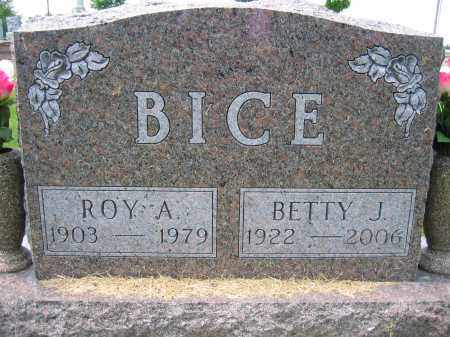 BICE, ROY A. - Union County, Ohio | ROY A. BICE - Ohio Gravestone Photos