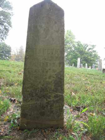 BIDDLE, ELIZABETH - Union County, Ohio | ELIZABETH BIDDLE - Ohio Gravestone Photos