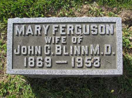 BLINN, MARY FERGUSON - Union County, Ohio | MARY FERGUSON BLINN - Ohio Gravestone Photos
