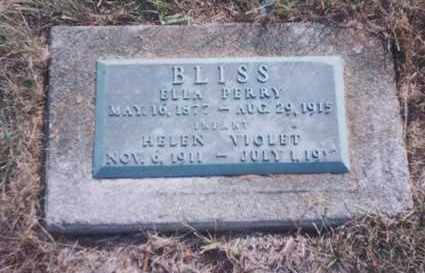 MARTIN BLISS, ELLA PERRY - Union County, Ohio | ELLA PERRY MARTIN BLISS - Ohio Gravestone Photos