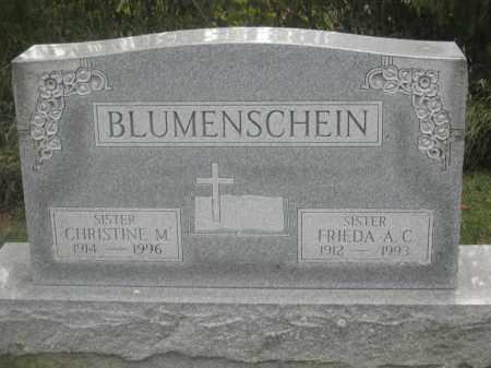 BLUMENSCHEIN, CHRISTINE M. - Union County, Ohio | CHRISTINE M. BLUMENSCHEIN - Ohio Gravestone Photos