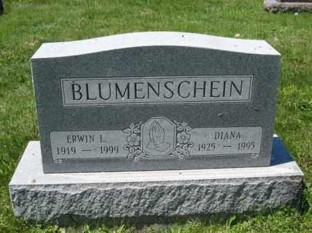 BLUMENSCHEIN, DIANA - Union County, Ohio | DIANA BLUMENSCHEIN - Ohio Gravestone Photos