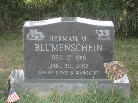BLUMENSCHEIN, HERMAN M. - Union County, Ohio | HERMAN M. BLUMENSCHEIN - Ohio Gravestone Photos