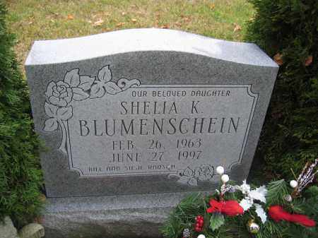 BLUMENSCHEIN, SHELIA K. - Union County, Ohio | SHELIA K. BLUMENSCHEIN - Ohio Gravestone Photos