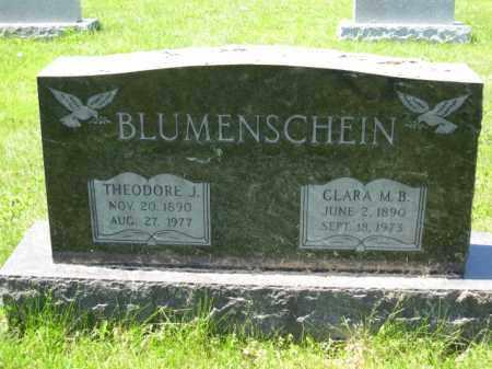 BLUMENSCHEIN, THEODORE J. - Union County, Ohio | THEODORE J. BLUMENSCHEIN - Ohio Gravestone Photos