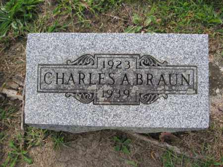 BRAUN, CHARLES A. - Union County, Ohio | CHARLES A. BRAUN - Ohio Gravestone Photos