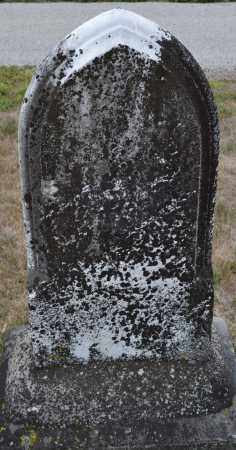 BROWN, JOHN E. - Union County, Ohio | JOHN E. BROWN - Ohio Gravestone Photos