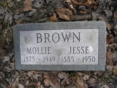 BROWN, JESSE - Union County, Ohio | JESSE BROWN - Ohio Gravestone Photos
