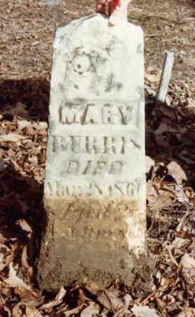 BURRIS, MARY - Union County, Ohio | MARY BURRIS - Ohio Gravestone Photos