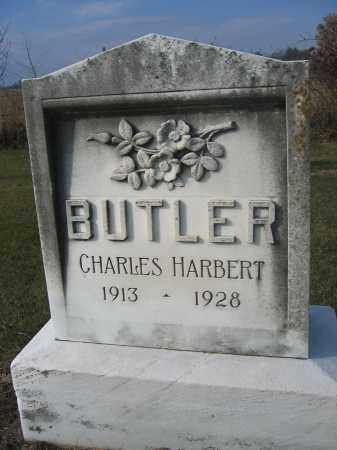 BUTLER, CHARLES HARBERT - Union County, Ohio | CHARLES HARBERT BUTLER - Ohio Gravestone Photos