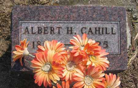CAHILL, ALBERT H. - Union County, Ohio | ALBERT H. CAHILL - Ohio Gravestone Photos