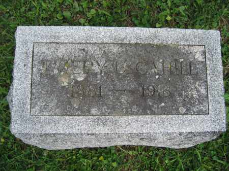 CAHILL, EMERY U. - Union County, Ohio | EMERY U. CAHILL - Ohio Gravestone Photos