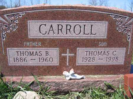 CARROLL, THOMAS B - Union County, Ohio | THOMAS B CARROLL - Ohio Gravestone Photos