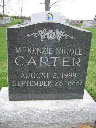 CARTER, MCKENZIE NICOLE - Union County, Ohio | MCKENZIE NICOLE CARTER - Ohio Gravestone Photos