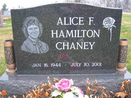 CHANEY, ALICE HAMILTON - Union County, Ohio | ALICE HAMILTON CHANEY - Ohio Gravestone Photos