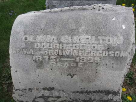 CHARLTON, OLIVIA - Union County, Ohio | OLIVIA CHARLTON - Ohio Gravestone Photos