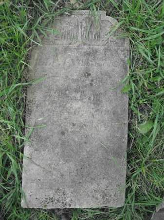 COCHRAN, ELLEANOR - Union County, Ohio | ELLEANOR COCHRAN - Ohio Gravestone Photos