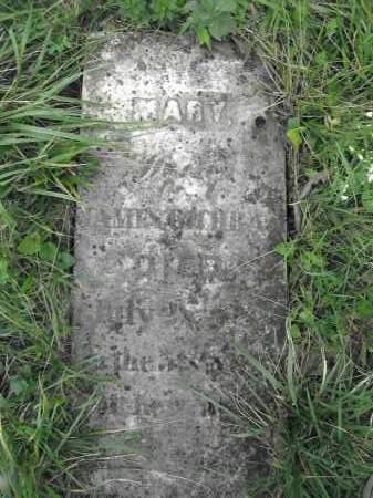 COCHRAN, MARY - Union County, Ohio | MARY COCHRAN - Ohio Gravestone Photos