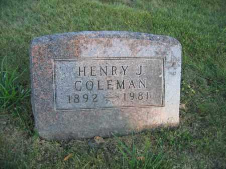 COLEMAN, HENRY J. - Union County, Ohio | HENRY J. COLEMAN - Ohio Gravestone Photos