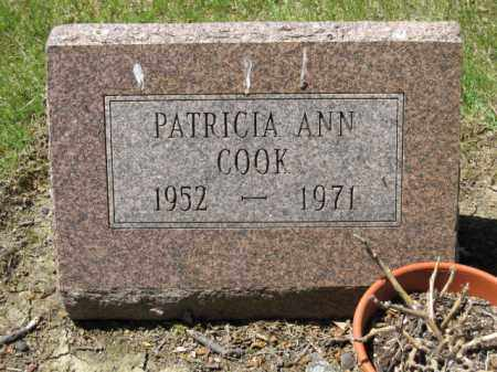 COOK, PATRICIA ANN - Union County, Ohio | PATRICIA ANN COOK - Ohio Gravestone Photos
