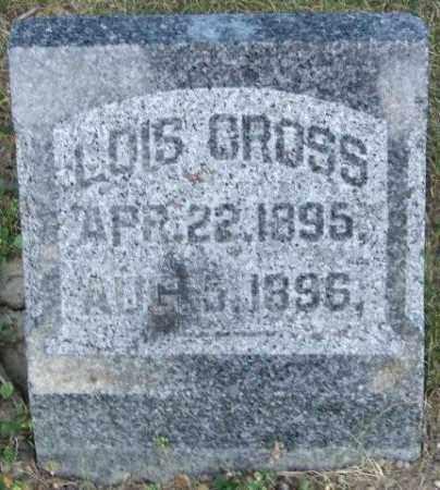 CROSS, LOIS - Union County, Ohio | LOIS CROSS - Ohio Gravestone Photos
