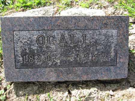 DAVIS, OGALL - Union County, Ohio | OGALL DAVIS - Ohio Gravestone Photos