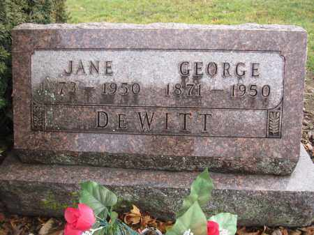 DEWITT, JANE MULLIGAN - Union County, Ohio | JANE MULLIGAN DEWITT - Ohio Gravestone Photos