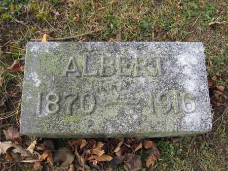 DILSAVER, ALBERT - Union County, Ohio | ALBERT DILSAVER - Ohio Gravestone Photos