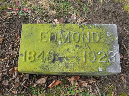 DILSAVER, EDMOND - Union County, Ohio | EDMOND DILSAVER - Ohio Gravestone Photos
