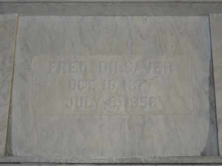 DILSAVER, FRED - Union County, Ohio | FRED DILSAVER - Ohio Gravestone Photos